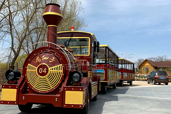 Amusement Fun Train Rides for Family in Dinis Plant