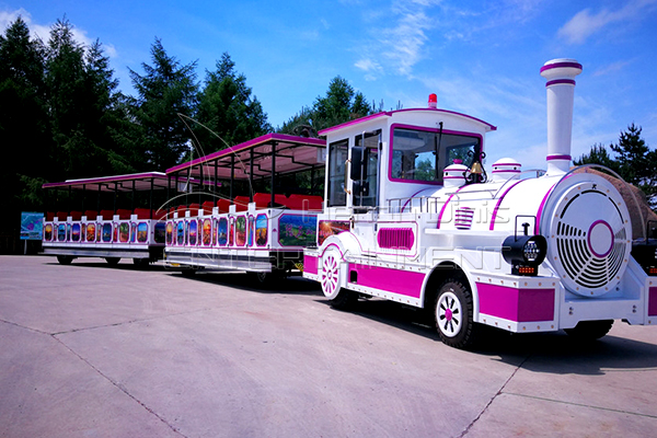 Get Customized Outdoor Train Rides Equipment from Dinis for Your Amusement Park Business
