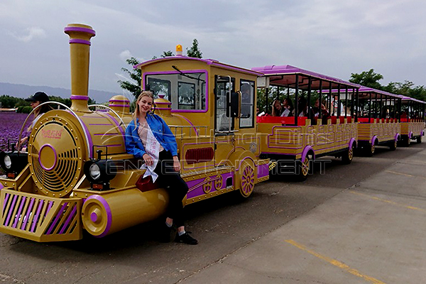 Latest Bullet Fun Fair Trackless Train Rides for Sale Manufactured by Dinis Company