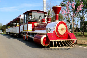 Outdoor Public Park or Shopping Mall Train Rides Manufactured and Sold by Dinis Play Park Equipment Supplier