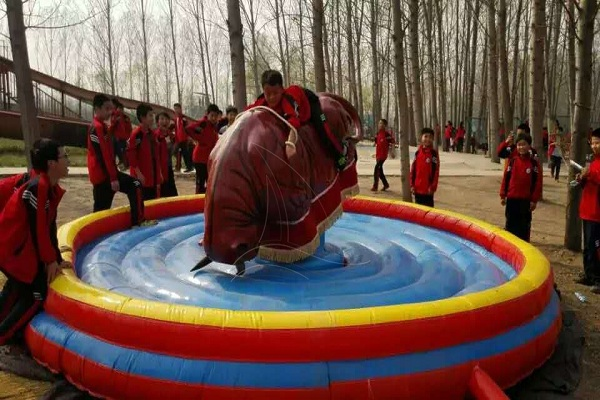 Purchase Mobile Theme Park Mechanical Bull Rides for Sale from Dinis Equipment Company