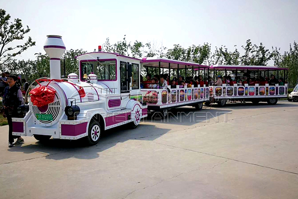 Small Passenger Backyard Trains for Sale for Both Children and Parents at Home